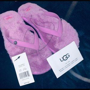 UGG Women's Slipper Sandals. Size 7. New w/Box